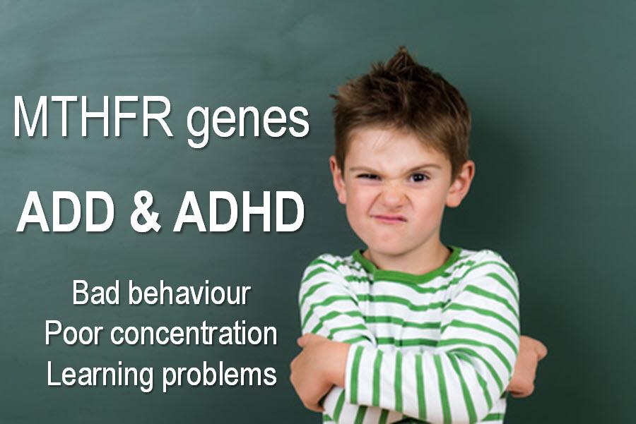 MTHFR & ADHD